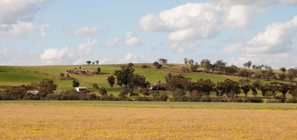 fields near Brookton